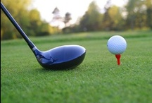 Promotional Golf Items / Hit the green this golf season with your logo in tow. Browse Motivators' ideas for useful and memorable golf giveaways.