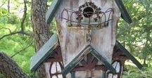 animal and bird boxes / some fun bird nest boxes and bird houses with a few toad homes and fairy houses for good measure. fun with gourds making nest boxes and animal shelters.