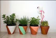 Plantes & déco florale / Le masking tape est parfait pour orner fleurs & bouquets !