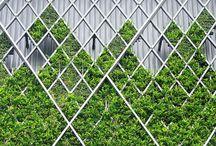 verticalgarden_