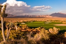 Sun Mountain Course at the Las Vegas Paiute Golf Resort / A lot of golf, a little tan.....Shining at 7,112 yards, the second course is considered the tamest of the three but is widely considered the most pristine playing conditions.  A kindler, gentler Dye design, many golfers hail the Sun as their favorite because they feel like they are on the edge of nature with the course's natural rolling terrain, monstrous mountain backdrop, and intertwined indigenous desert landscape.