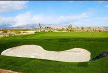 Practice Facilities at the Las Vegas Paiute Golf Resort / The Las Vegas Paiute Golf Resort offers 2 full practice facilities for their patrons that include grass driving ranges, chipping green, practice bunker and putting green.