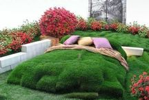 Garden / garden  / by thomas valentine