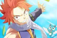 Fairy Tail / A young sorceress, Lucy goes to the land of Fiore to join one of the most popular guild magic, but he knows that it is very difficult. Its purpose is one of the best guild in the kingdom - Fairy Tail. On his way, by chance, he meets Natsu and his companion, Happy'ego. Natsu (also called Salamandra) is a member of Fairy Tail and helps Lucy, and then proposes that she joined a guild.