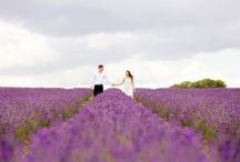 Engagement Shoots / Engagement photo shoots. Pre-wedding photography in Sussex by Dennison Studios Photography.