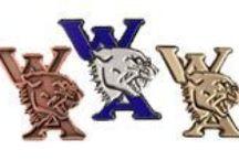 Custom Enamel Pins / Custom Enamel Pins for company logo pins, artists,  award programs and sport trading pins.
