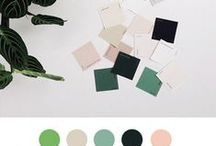 color palette - mood board / inspiration color, with mood board