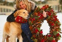 Wreaths - Christmas / For any type of Christmas Wreath