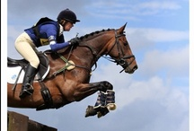 Horses & Eventing / Yes, I ride. And no, I don't just sit there. / by Katherine Pitcher
