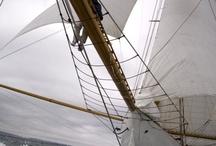 Sailing Seas / Sailing & Style