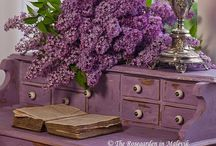 Purple loves / by Robin Clayton