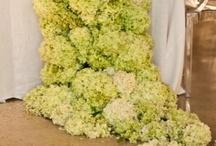 Floral!