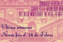 Dibuixar Versalles. Charles Le Brun (1619-1690) / L'exposició Dibuixar Versalles ens mostra un centenar de peces de Charles Le Brun. Com a peces destacades trobem trenta cartrons que va fer com a dibuixos preparatoris per a la Galeria dels Miralls del Palau de Versalles i per a la Escala dels Ambaixadors, avui en dia desapareguda.  Del 18 de novembre de 2015 al 14 de febrer de 2016