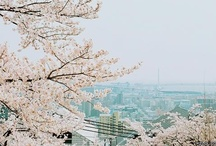 Asia Photography / Asian photography from Japan and Korea. Beautiful scenery, indeed!!