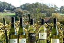 Oatley Wines / English wines from Somerset, UK. Oatley Vineyard, Somerset TA5 2NL, UK. Red soil, old vines, crisp dry international-award-winning white wines since 1989