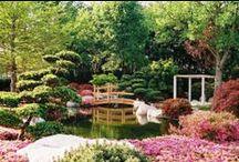 japanese garden, zen garden