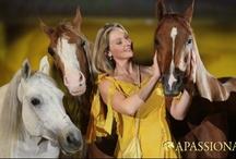 """APASSIONATA / APASSIONATA verzaubert mit magischen Begegnungen zwischen Mensch und Pferd. Dafür wurde APASSIONATA mit dem PRG Live Entertainment Award 2010 als """"Show des Jahres"""" ausgezeichnet."""