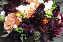 Fall bouquets / Rich and vibrant