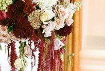 Burgundy, blush and cream / Burgundy, blush and cream wedding with gold accents.