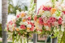Summer weddings / Peach, coral, soft pink, and yellow. Deep watermelon accent.