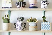 nature: plant life / Ideas and inspiration for house plants