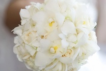 FLOWERS /  Our skilled team of worldly floral designers will create the ideal wedding flowers & floral arrangements for your wedding, themed event, social soirée, gala, or corporate event.