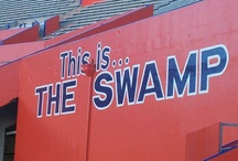 Florida Gators / Proud to be a FLORIDA GATOR.......nothing like a football game in THE SWAMP.    GO GATORS!!!!! / by Judy Deeson