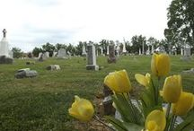 Cemeteries / Information about, and pictures of various cemeteries throughout the world
