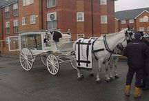 Funeral Carriages (Horse Drawn Hearses) / Funeral carriages that were horse drawn. Before there were motorized hearses available.