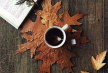Coffee, Tea, Chocolate