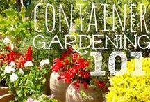 "Gardening tips / ""A weed is but an unloved flower."" ~ Ella Wheeler Wilcox"