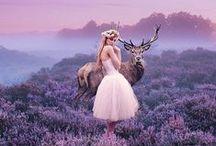 Photography - Fairytale