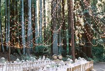Our Wedding || Scenery