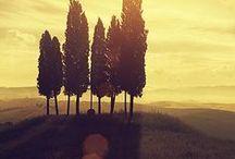 """Romantic Tuscany / """"Life is not measured by the number of breaths we take,  but by the moments that take our breath away""""  """"La vita non è fatta di respiri  ma di attimi che tolgono il respiro"""""""