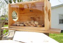 ♥ Bird HOUSES