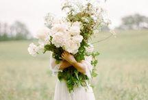 SEASON | Spring / Sping, flowers, sunshine, birds, brightness