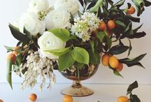 blooms. / FLOWERS & BOTANICALS