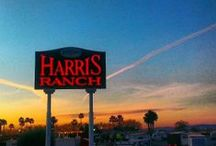Harris Ranch Fan Photos / A collection of pins and Instagram photos from Harris Ran fans!