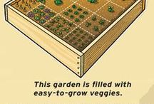DYRKogSPIS / How to (easily) grow your greens. - Make your family-sized garden eatable