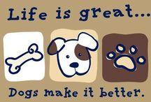 Doggie Joy! / by Debbie Genalo