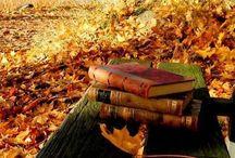 Autumn / Voglio un autunno rosso come l'amore, giallo come il sole ancora caldo nel cielo, arancione come i tramonti accesi al finire del giorno, porpora come i granelli d'uva da sgranocchiare. Voglio un autunno da scoprire, vivere, assaggiare. Stephen Littleword