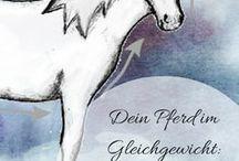 slaka Blogbeiträge / Hier gibt es Wissenswertes, Nachdenkliches und Unterhaltsames rund um das Thema Pferd.