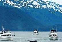 Travel | Alaska Cruise / Alaska Cruise Tips and Things to Do