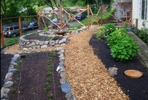 School Garden Design / Be inspired by these creative school garden design elements.