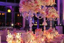 Wedding ✨ / Wedding