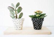 ^^plantes & fleurs^^ / ma vie en vert