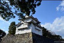 Viviendo en Nihon! / Mi forma de vivir y sentir Asia