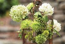 Decor | Garden
