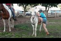 Portable Mounting Aid / This is Solo-Ride , a portable mounting aid for everyone. Now you can get back on your horse anywhere , anytime. Visit www.hairybackranch.com to see more video of Solo-Ride in action. Have a Great Ride!