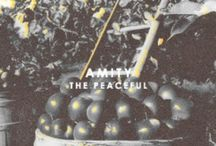 Amity / Those who blamed aggression formed Amity